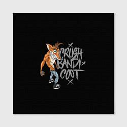 Холст квадратный Crush Bandicoot цвета 3D — фото 2