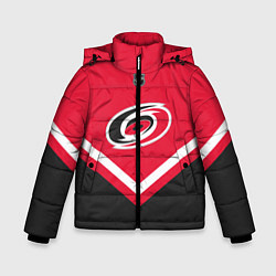 Куртка зимняя для мальчика NHL: Carolina Hurricanes цвета 3D-черный — фото 1