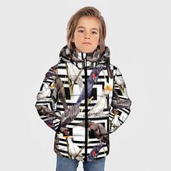 Куртка зимняя для мальчика Попугаи Какаду цвета 3D-черный — фото 2