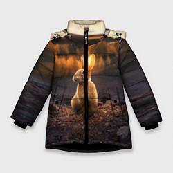 Детская зимняя куртка для девочки с принтом Солнечный зайчик, цвет: 3D-черный, артикул: 10164198706065 — фото 1