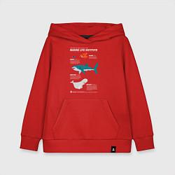 Толстовка детская хлопковая Marine Life цвета красный — фото 1