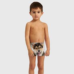 Плавки для мальчика Пемброк-вельш-корги цвета 3D — фото 2