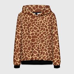 Толстовка-худи мужская Жираф цвета 3D-черный — фото 1