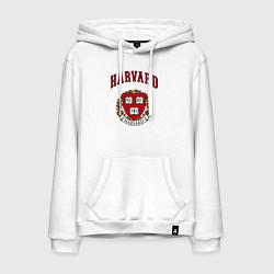 Толстовка-худи хлопковая мужская Harvard university цвета белый — фото 1