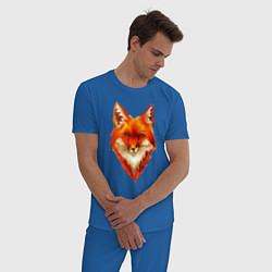 Пижама хлопковая мужская Огенный лис цвета синий — фото 2