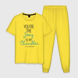 Пижама хлопковая мужская Youre the Joey to my Chandler цвета желтый — фото 1