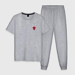 Пижама хлопковая мужская CHICAGO BULLS цвета меланж — фото 1