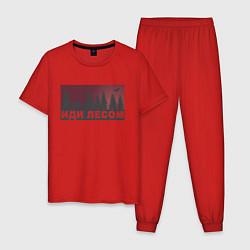 Пижама хлопковая мужская Иди лесом цвета красный — фото 1