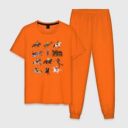 Пижама хлопковая мужская Конный виды спорта цвета оранжевый — фото 1