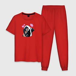 Пижама хлопковая мужская Влюбленный Цветочек цвета красный — фото 1
