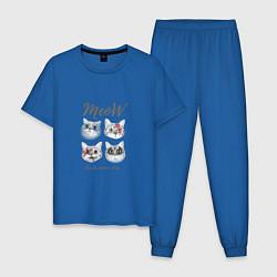 Пижама хлопковая мужская KISS CATS цвета синий — фото 1