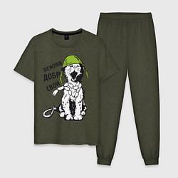 Пижама хлопковая мужская Вежливый котик цвета меланж-хаки — фото 1