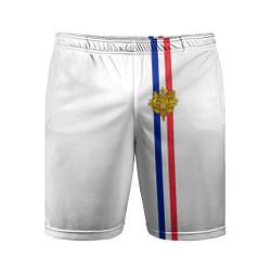 Шорты спортивные мужские Франция: лента с гербом цвета 3D — фото 1