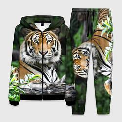 Костюм мужской Тигр в джунглях цвета 3D-черный — фото 1