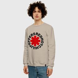 Свитшот хлопковый мужской Red Hot Chili Peppers цвета миндальный — фото 2