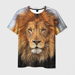 Футболка мужская Красавец лев цвета 3D-принт — фото 1