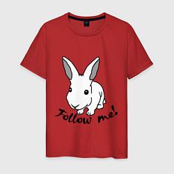 Мужская хлопковая футболка с принтом Rabbit: follow me, цвет: красный, артикул: 10015749200001 — фото 1