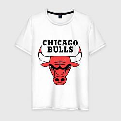 Футболка хлопковая мужская Chicago Bulls цвета белый — фото 1