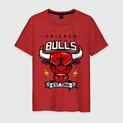 Футболка хлопковая мужская Chicago Bulls est. 1966 цвета красный — фото 1
