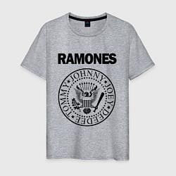 Футболка хлопковая мужская RAMONES цвета меланж — фото 1