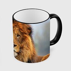 Кружка 3D Красавец лев цвета 3D-черный кант — фото 1