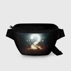Поясная сумка Destiny 2 цвета 3D — фото 1